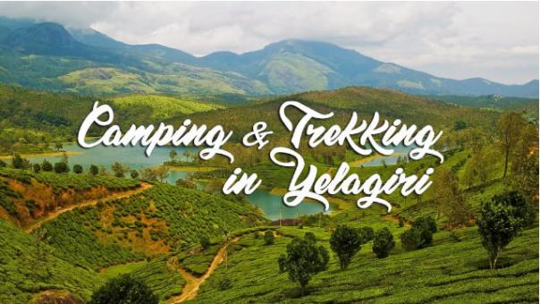Yelagiri Tour Packages