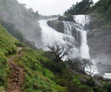 Book Tour Packages From Bangalore to Coorg.Cabsrental.in