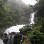 Bangalore to Coorg Cab,Cabsrental.in