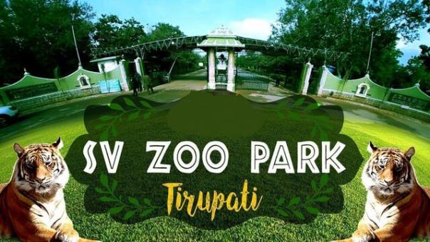 S.V.Zoological Park. Tirupati Darshan Cabs.cabsrental.in
